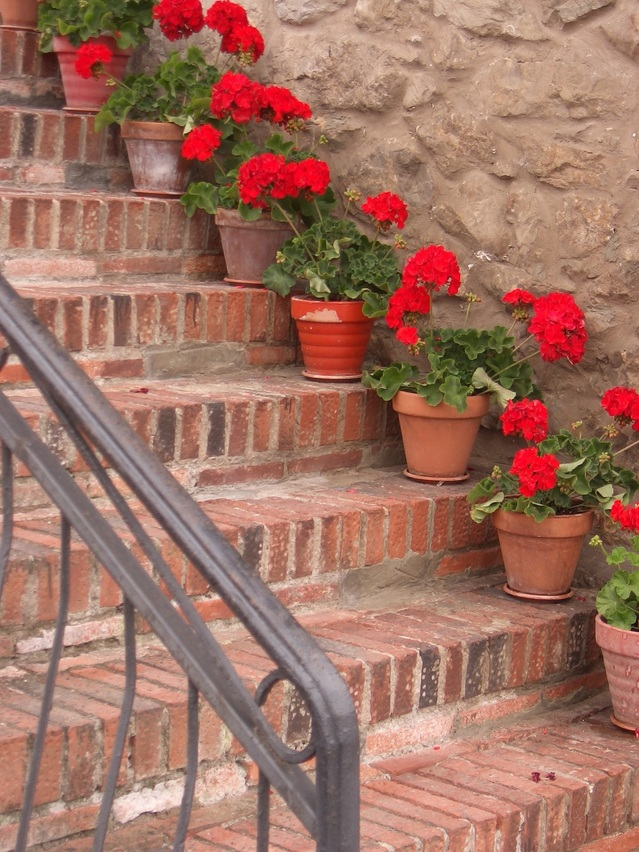 flowered-steps-1234799-639x852