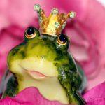 frog-prince-1370022_640
